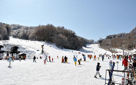 佐久スキーガーデンパラダ